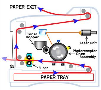 Printer Drum 101