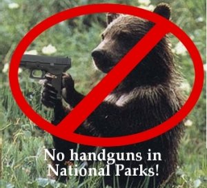 """Much Ado About Nothing- Snellville's """"Proposed"""" Gun Ban"""