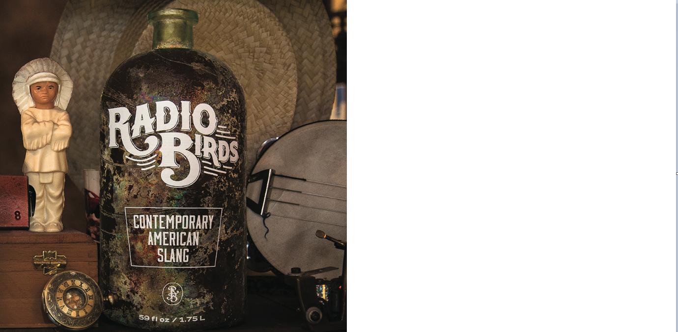 Radio Birds release Contemporary American Slang today, via Brash Music!