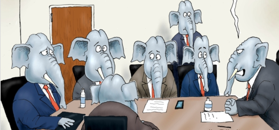 Elephants in the Room- Branco